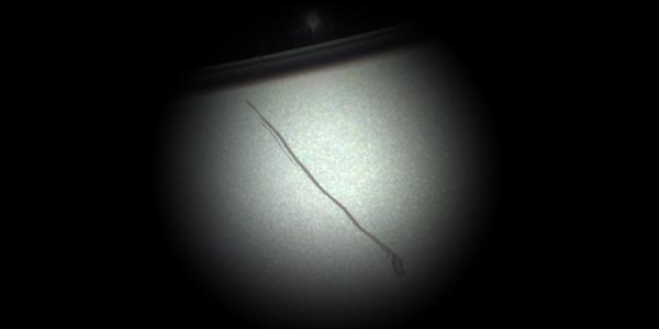 scratch_detail